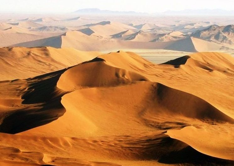 Namibia Highlights Safaris